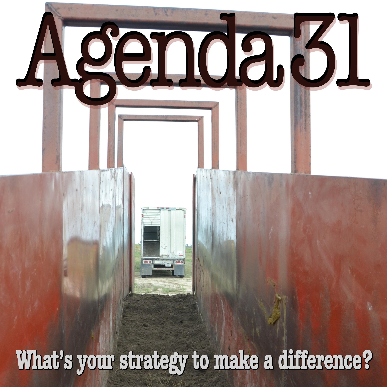 agenda31-ep112-albumcover